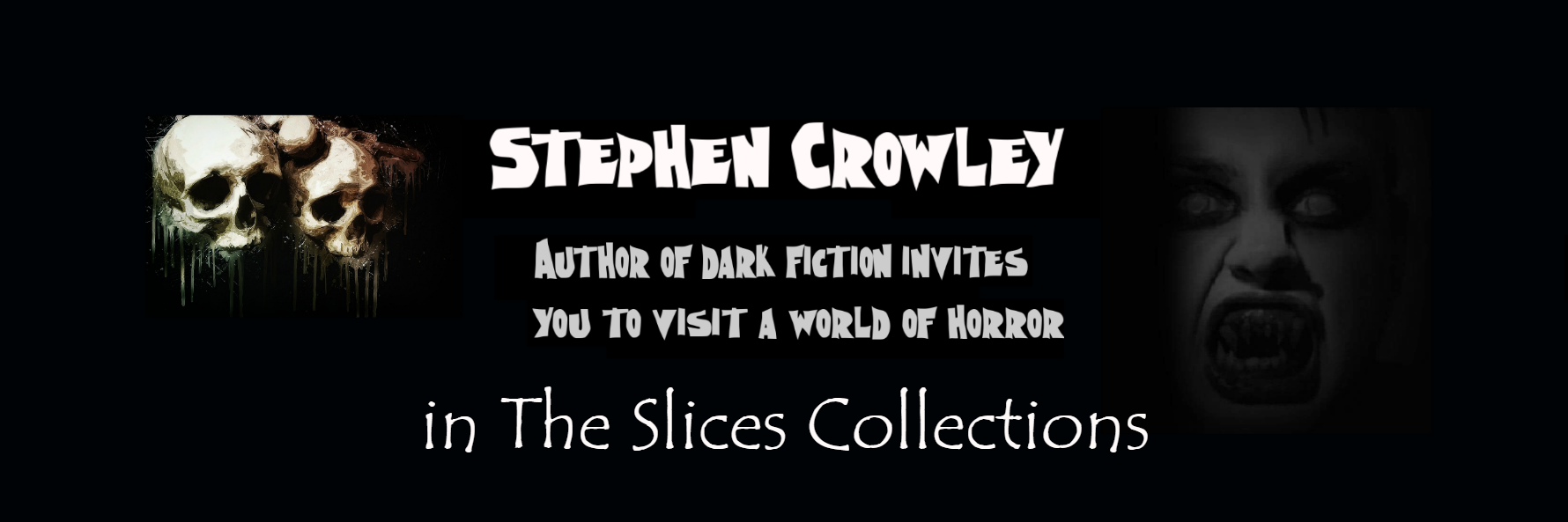 stephen crowley the slices collections